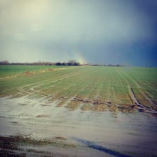 dissolving rainbow